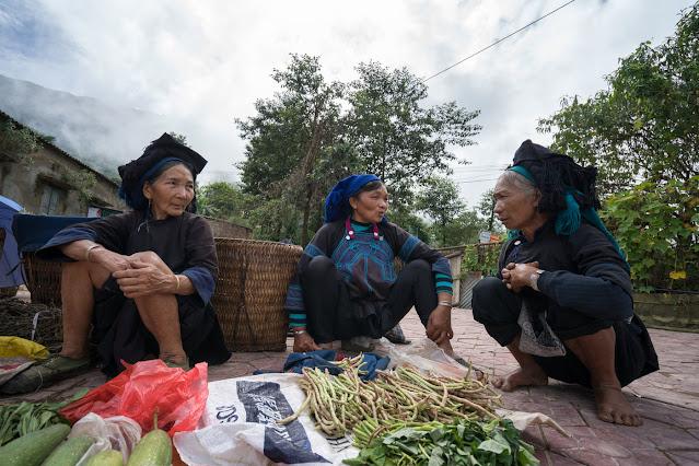 Study reveals rich genetic diversity of Vietnam