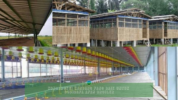 Konstruksi Kandang yang Baik Untuk Budidaya Ayam Broiler