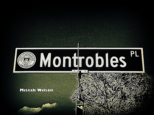 Montrobles Place, San Marino, California by Mistah Wilson