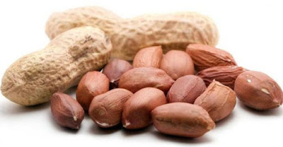 Manfaat Kacang Tanah untuk Kesehatan Tubuh