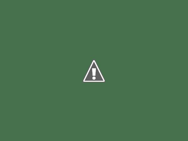 Ella & Mrs Gooseberry: Book Review