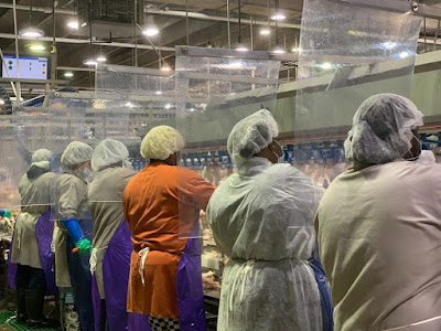 Almost 900 workers test positive for coronavirus at one Tyson meat plant