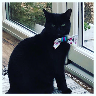 Parsley's Bow Tie Selfie @BionicBasil® The Sunday Selfies Blog Hop