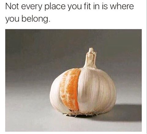 Not every place you fit is where you belong