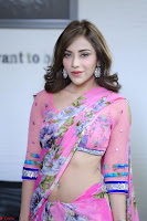 Actress Angela Krislinzki in Pink Saree Blouse Exclusive Pics March 2017 ~  077.JPG