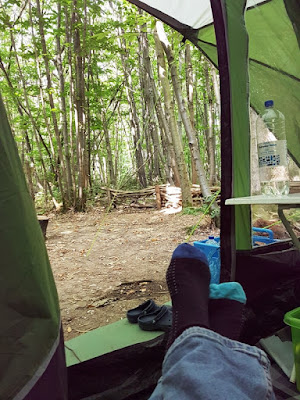 View of forest looking out of the tent