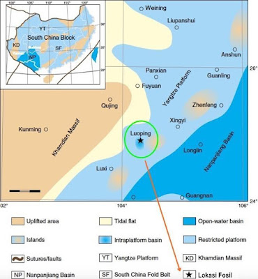 Raksasa Laut Kuno Ternyata Bukan Bertelur Tapi Melahirkan