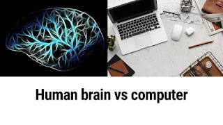 The human brain versus the computer