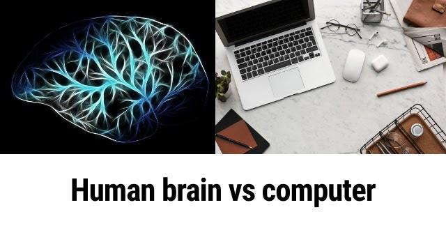 The human brain versus the computer