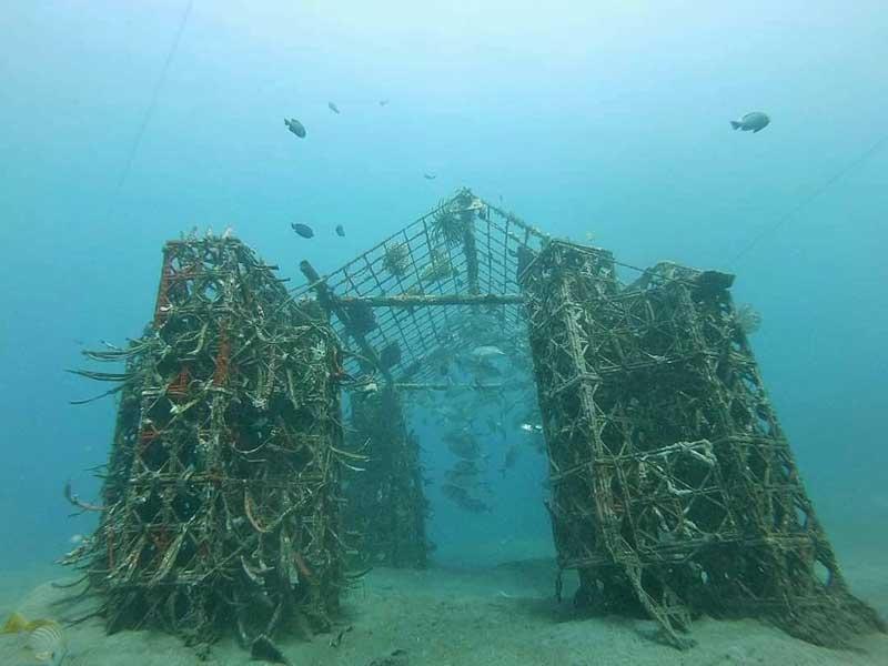 Spot Snorkeling Wisata Bangsring
