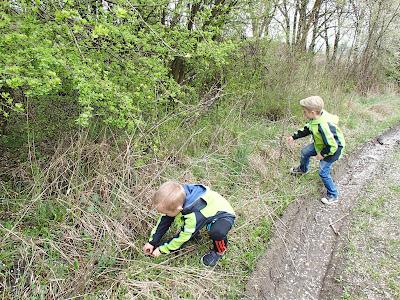 Wiosna w parku, ślimak winniczek, ratowanie ślimaków, gody żab