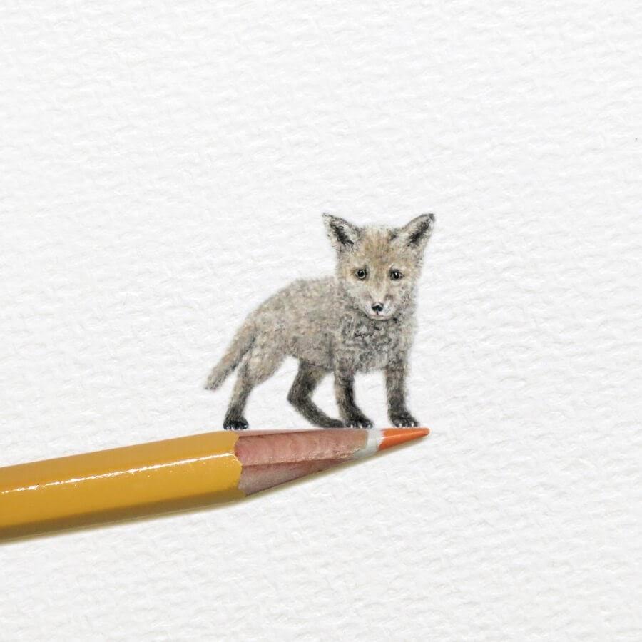 11-Fox-Cub-Frank-Holzenburg-www-designstack-co