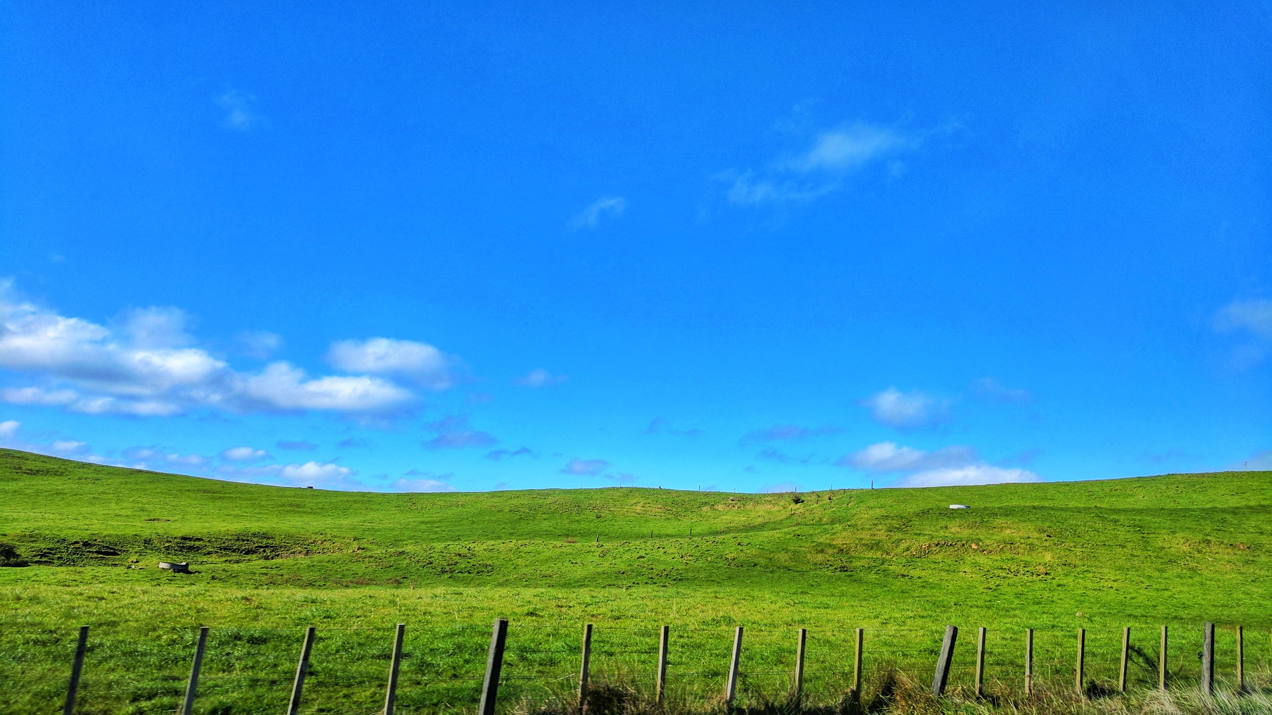 New Zealand landscape akin to Windows XP Bliss wallpaper