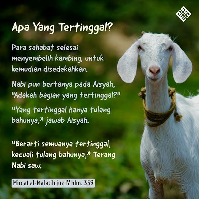 Aisyah dan kambing sedekah