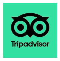 Tripadvisor App Download