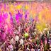 होली का त्योहार हम क्यों मनाते हैं-Why do we celebrate Holi festival..?