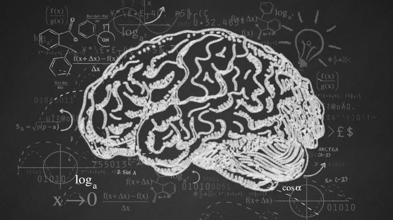 PSU lenguaje: Habilidades de comprensión lectora