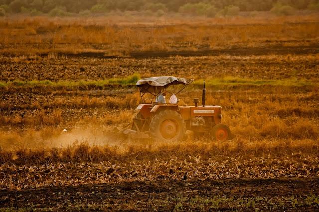 Telangana Govt Agriculture