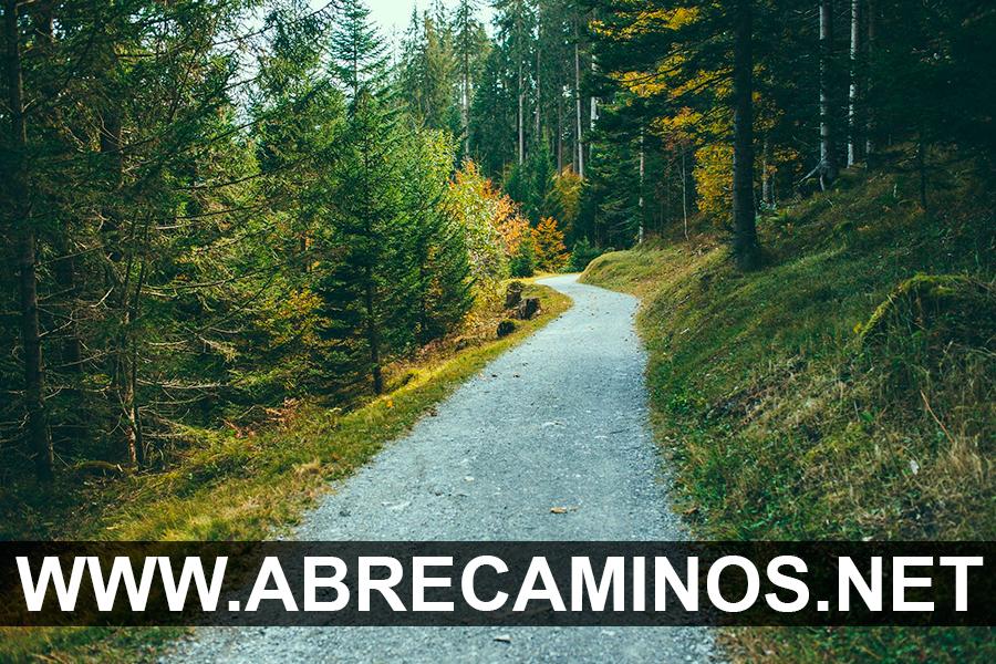Abre Caminos de Protección para tu Vida