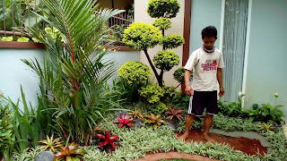 Tukang Taman Rumpin,Jasa Pembuatan Taman di Rumpin