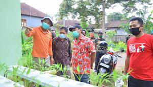 Dewan PDIP Bali Tinjau Pembibitan Tanaman Hortikultura di Payangan