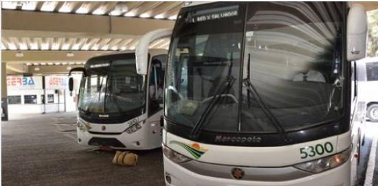 Bahia: Transporte intermunicipal será flexibilizado, diz Rui Costa