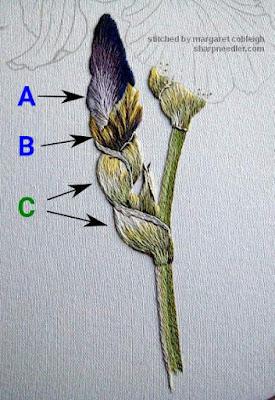Annotated thread painted iris bud and stem - Iris Spartan (design by Trish Burr)