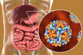 Hepatitis B – What You Need to be Aware of