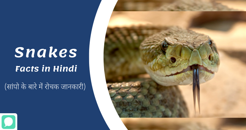 Interesting Information about Snakes in Hindi