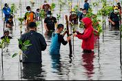 Presiden Jokowi: Indonesia Miliki Hutan Mangrove Terluas di Dunia