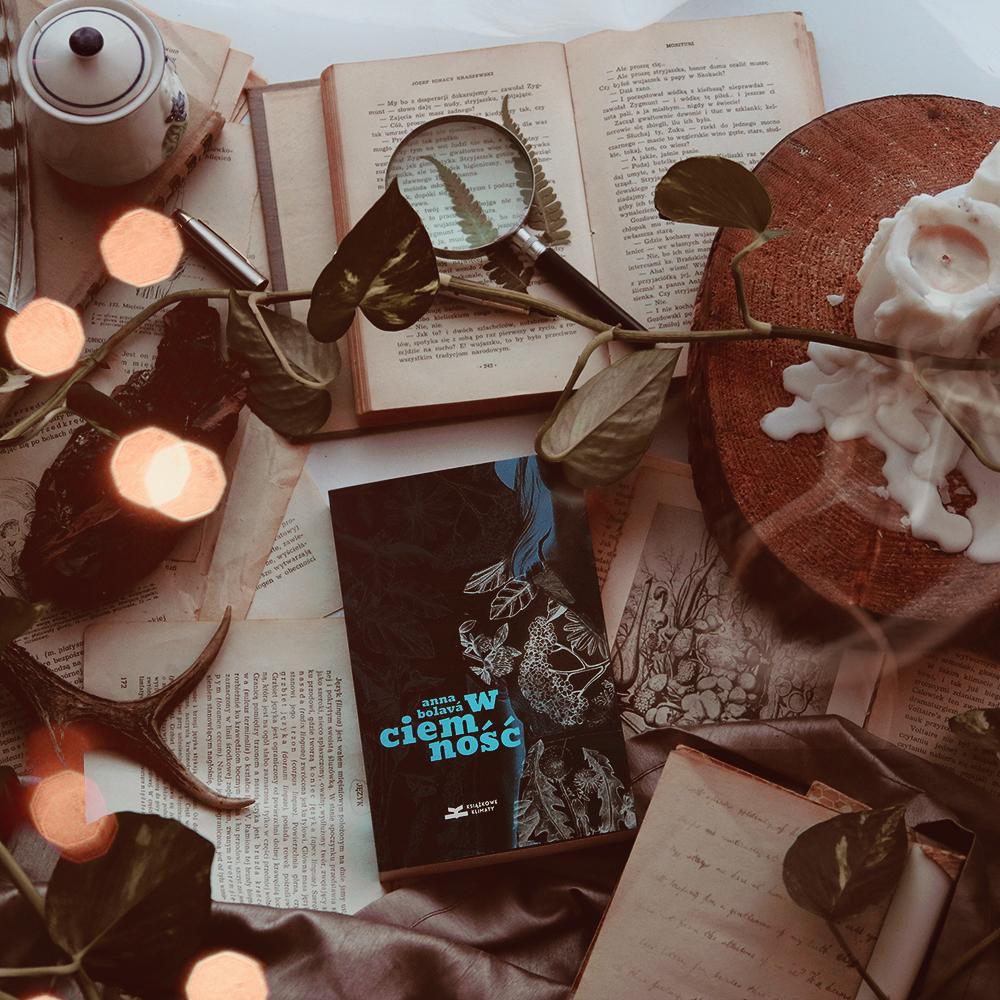 #142 W ciemność - Anna Bolava