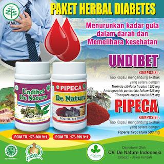 PAKET HERBAL DIABETES