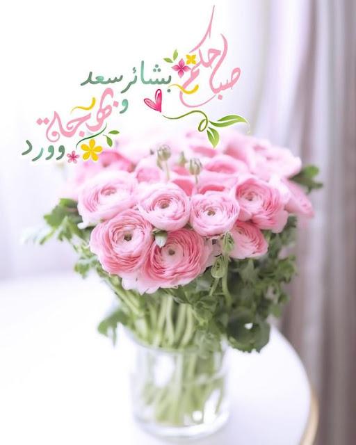 صباحكم بشائر سعد وبهجة وورد