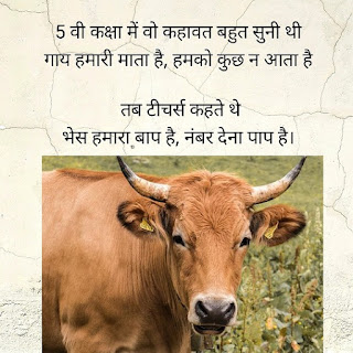 Poem on Cow in Hindi,  cow poetry