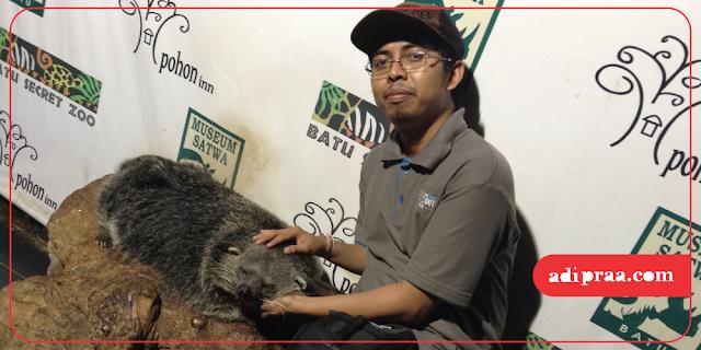 Bertofo dengan hewan di Batu Secret Zoo | adipraa.com