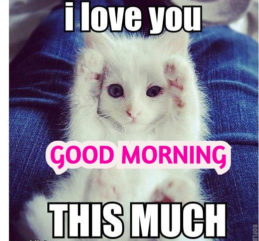 18+ Romantic And funny Good Morning Meme For Her - Girlfriend.