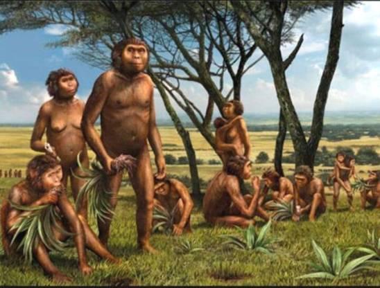 Sejarah manusia purba di Indonesia lengkap dan gambar