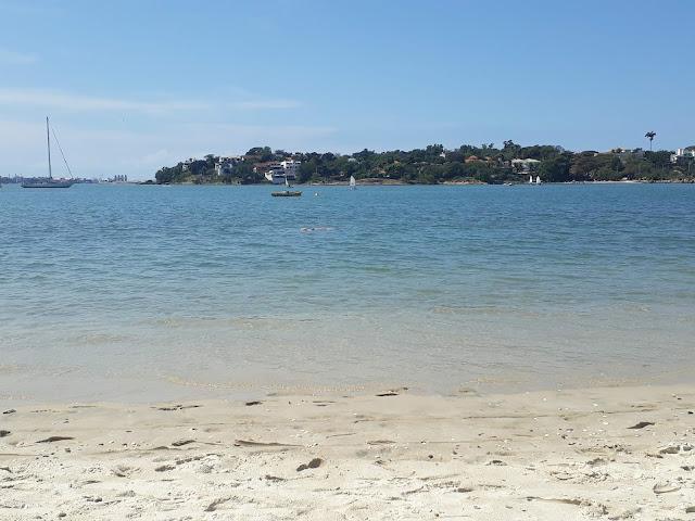praia esverdeada com dois barcos a vela