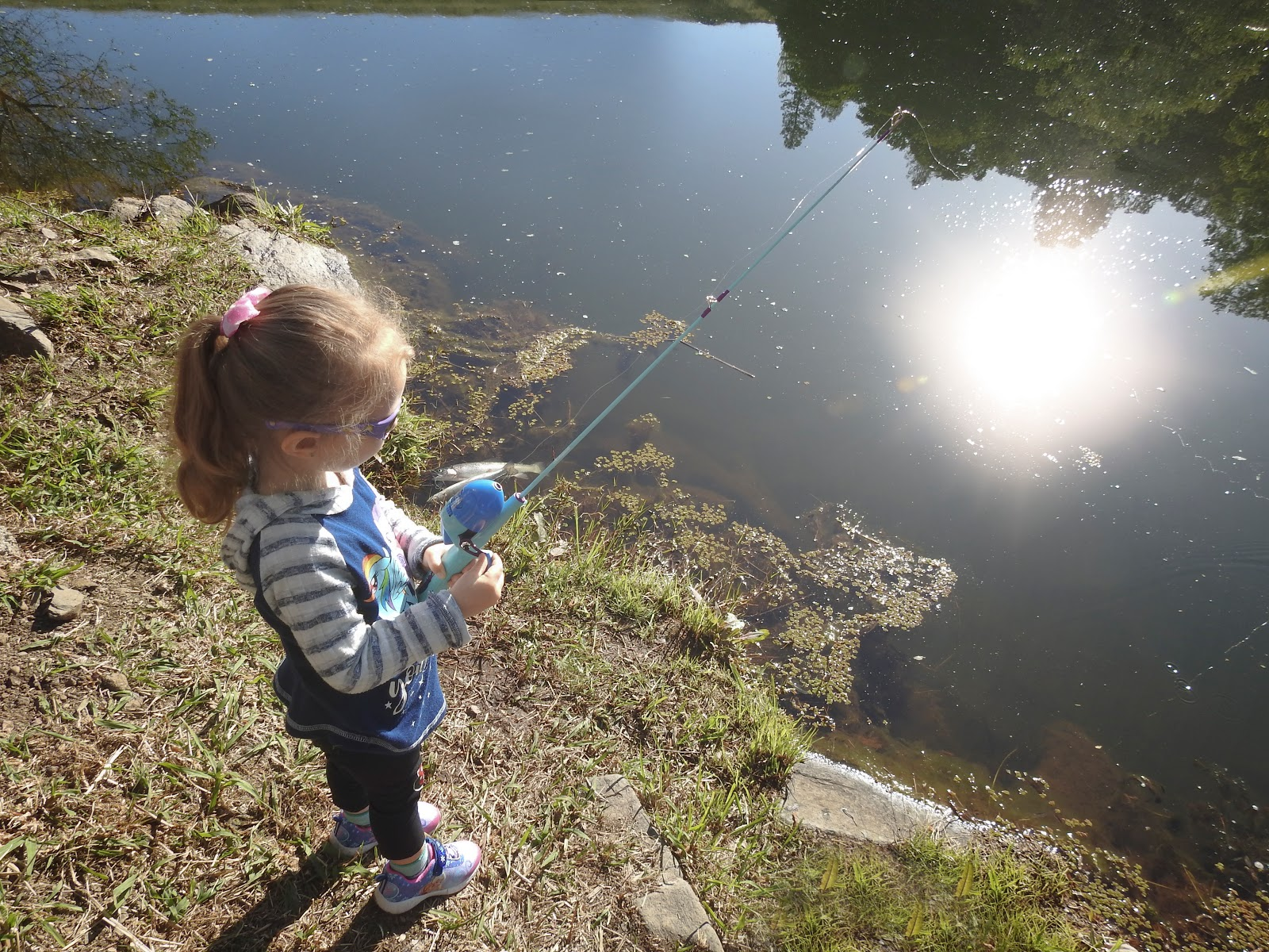 Exploring Fishing