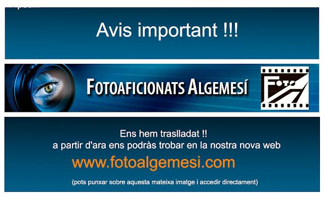 www.fotoalgemesi.com