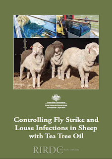 Controlling Fly Strike and Louse Infections in Sheep with Tea Tree Oil