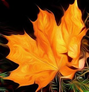 Blaetter, Laub, Baum, Leaves, deciduous tree, Blare, bladwisselende boom, Lë, pemë qumeshtit, Lišće, listopadno drvo, Листа, широколистни дървета
