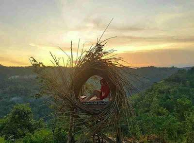 Wisata gunung kidul, destinasi jogja, wisata hits dan instagramable, htm bukit mojo gumelem, lokasi wisata bukit mojo, spot foto keren jogja