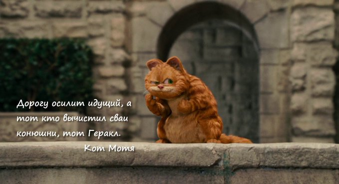 Блог Кота Моти  - Страница 4 E9FkgB8WEAUrZh8