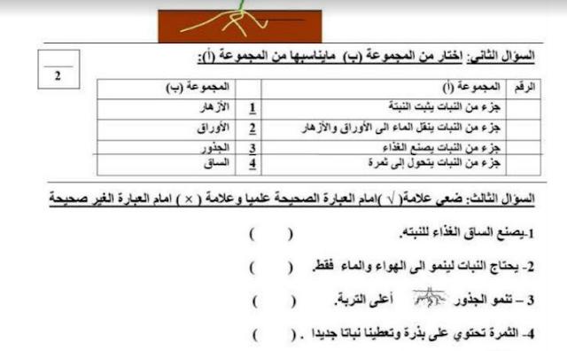 تدريبات علوم مع الإجابة للصف الثاني مدرسة الأكاديمية العربية