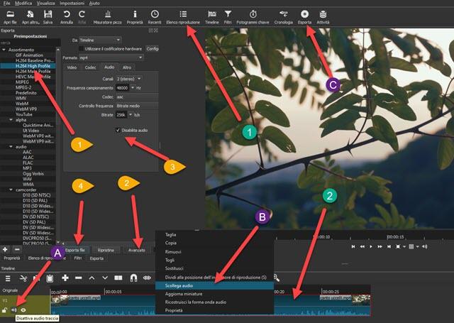 interfaccia di shotcut per togliere audio ai video