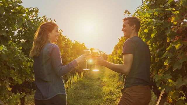 couple drinking wine in vineyard