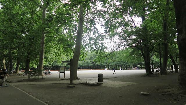 Rinshinomori park field