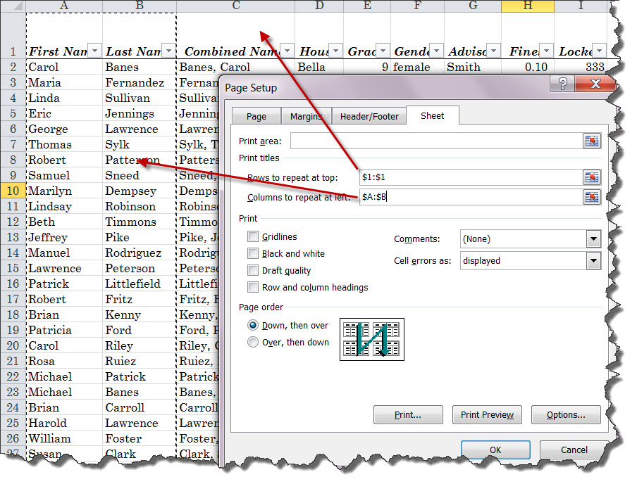 100 Amazing Computer Tips: Tip #90 - Printing Excel Worksheets