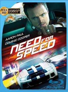 Need for Speed La película 2014 HD [1080p] Latino [GoogleDrive] chapelHD